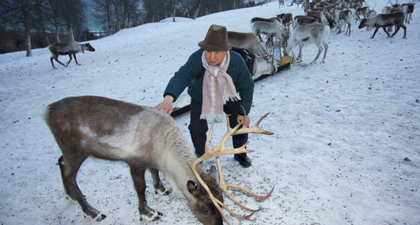 Changlin Xu Yak herder meeting reindeer
