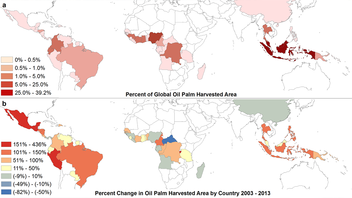 World production of palm oil graphic