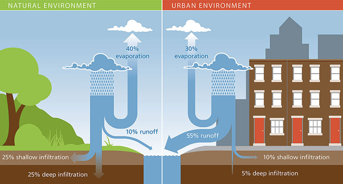 natural environment vs. urban environment stormwater runoff infographic