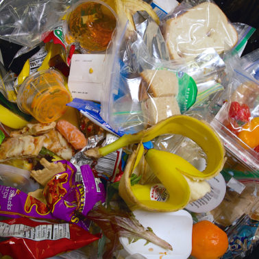 Millions of dollars' worth of food ends up in school trash cans every day. What can we do?