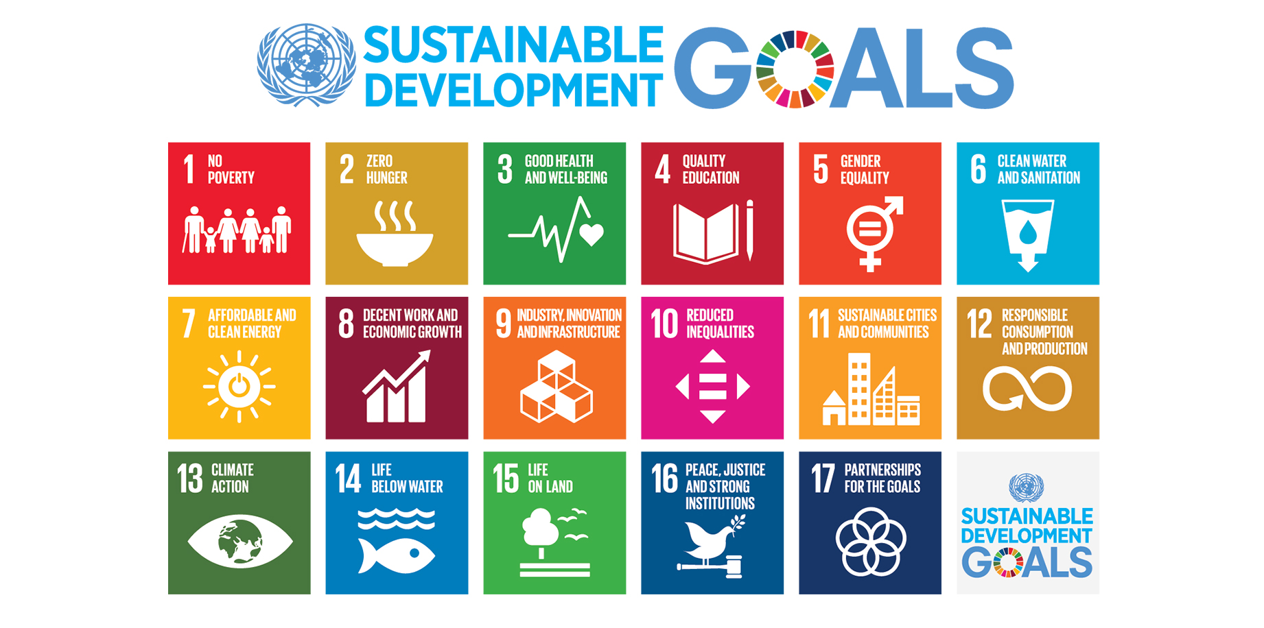 How are we doing with the environment-related Sustainable Development Goals?