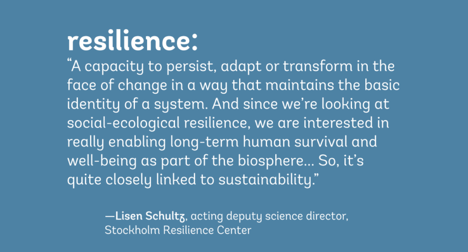 resilience definition