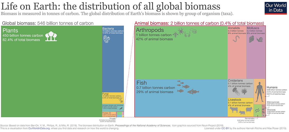 global biomass by taxon