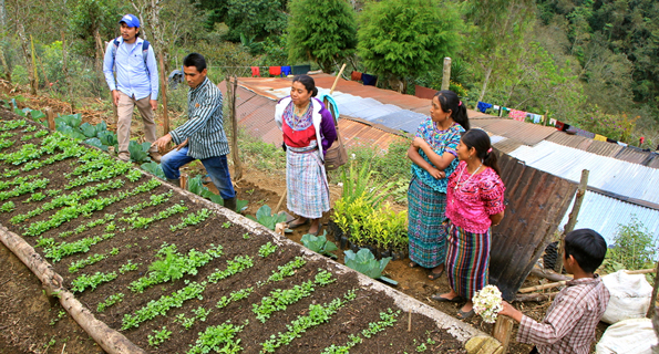 campesinos teaching sustainable low impact and indigenous methods