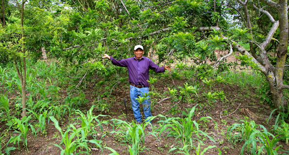 Don Cristobal, a farmer and community leader in Pacux, Guatemala