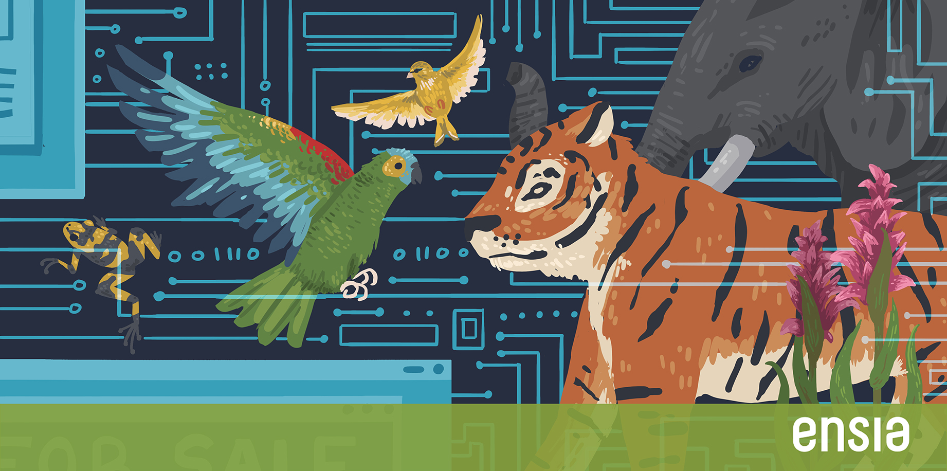 Opinion: Calling all hackers — endangered wildlife needs you | Ensia