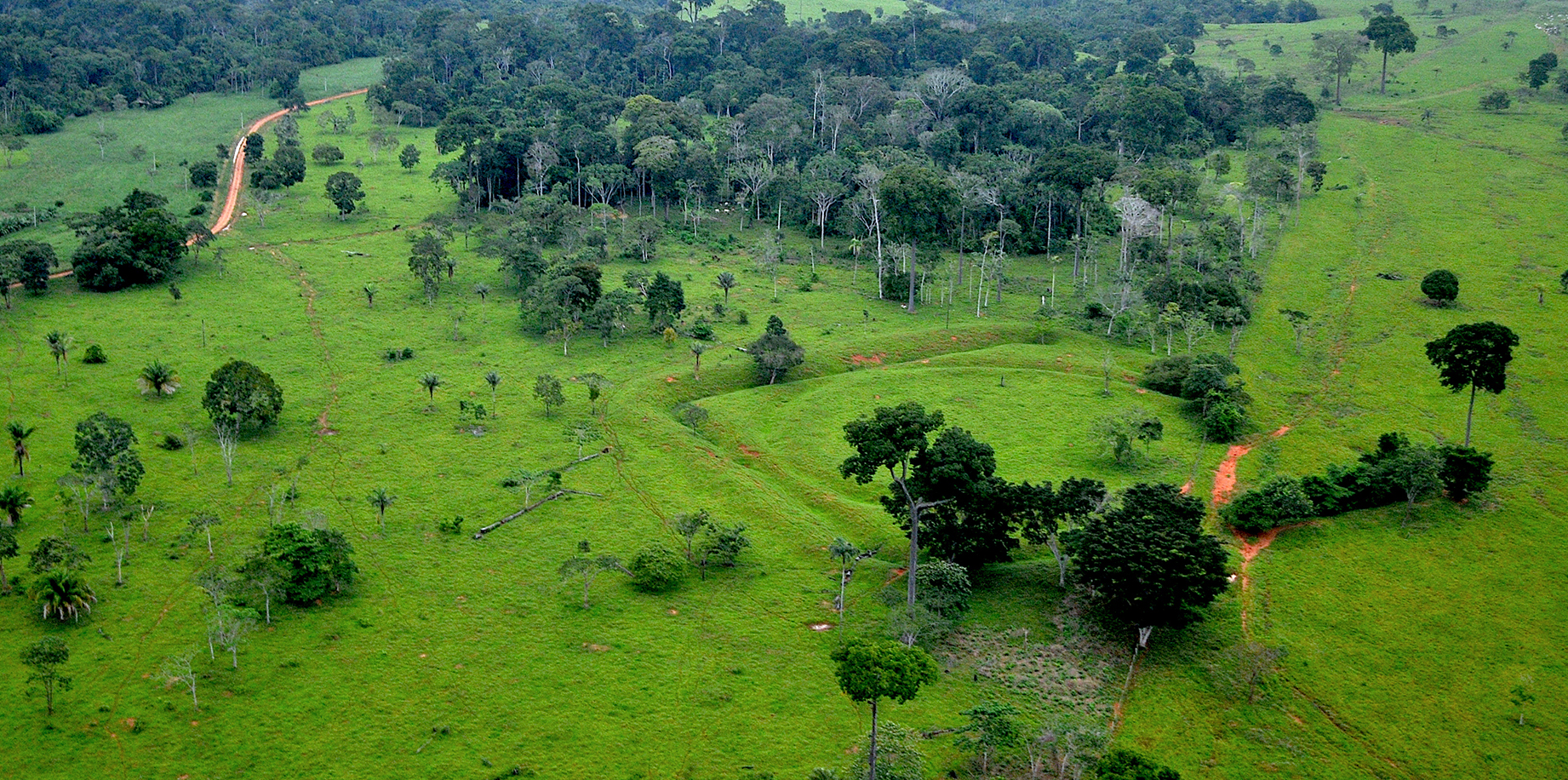 Ancient Amazonian societies managed the forest intensively but sustainably