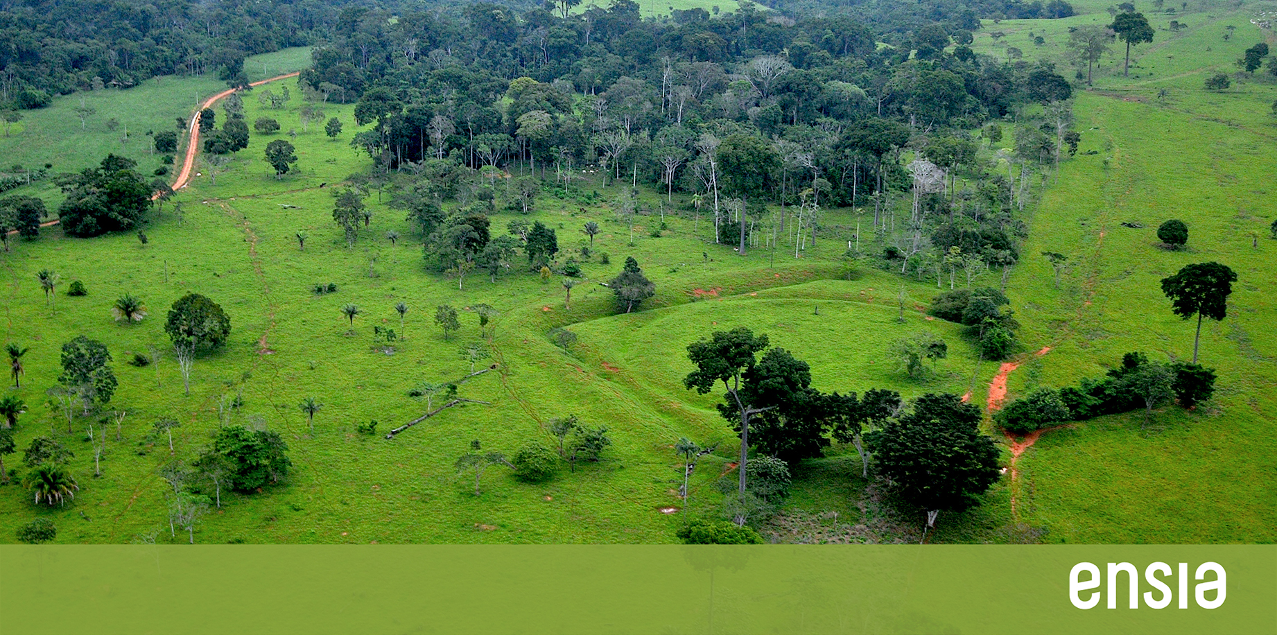 Sustainable farming lessons from the Amazon's ancient inhabitants | Ensia