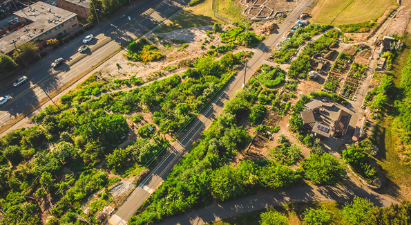 Beacon Food Forest, Seattle