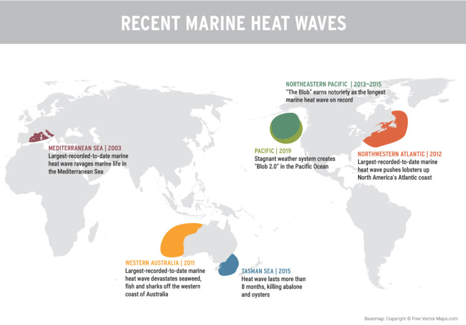 map of marine heat waves