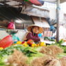 More than a year after the emergence of COVID-19, what should be done about wet markets?